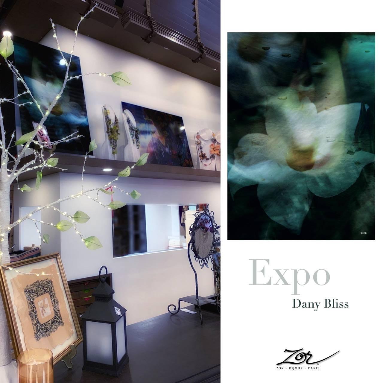 Exposition Digital Painting de Dany Bliss Photographe. Evènement, artiste chez Zor bijou, concept store Paris 2. Création & Artisanat